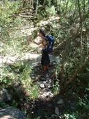border stream kayle brandon