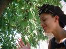 mulberry bush kayle brandon