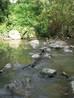 gaas river ford