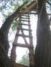 gaas river ford watchtower ladder