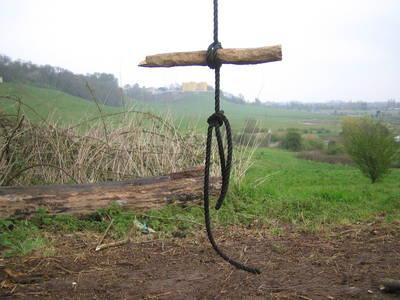 Tree Swing Seat