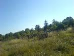 pravoslavno groblje pristina National Id Archive